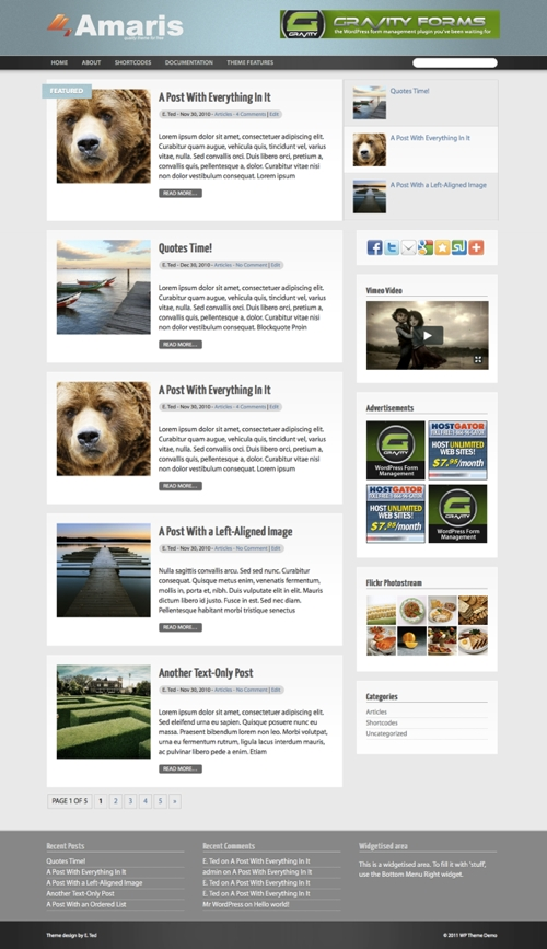 amaris wordpress theme