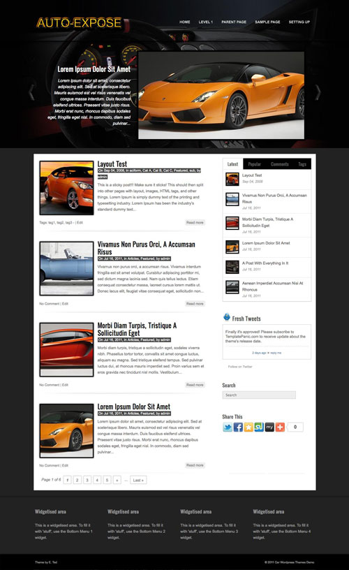 auto-expose wordpress theme
