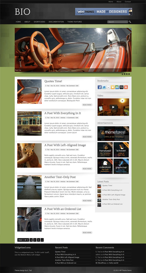 bio wordpress theme