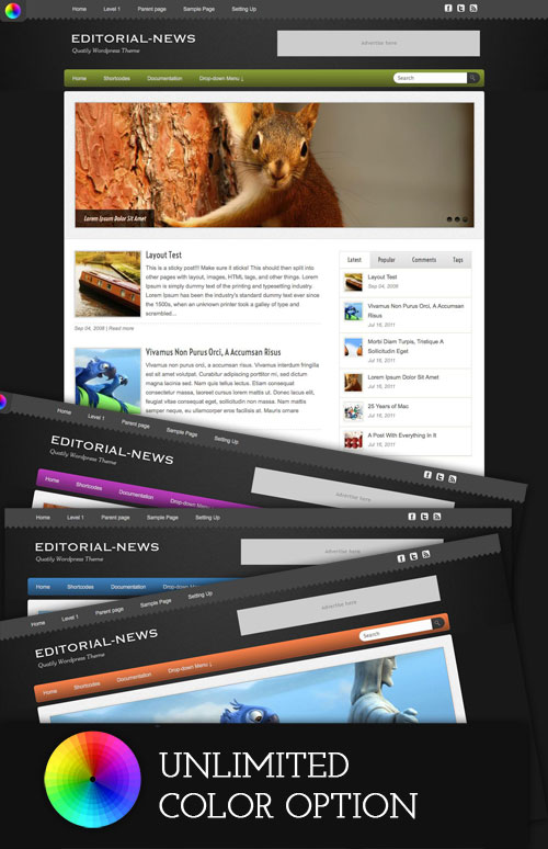 Editorial-News wordpress theme