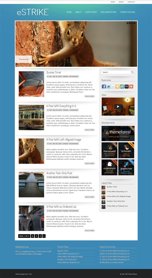 eStrike wordpress theme