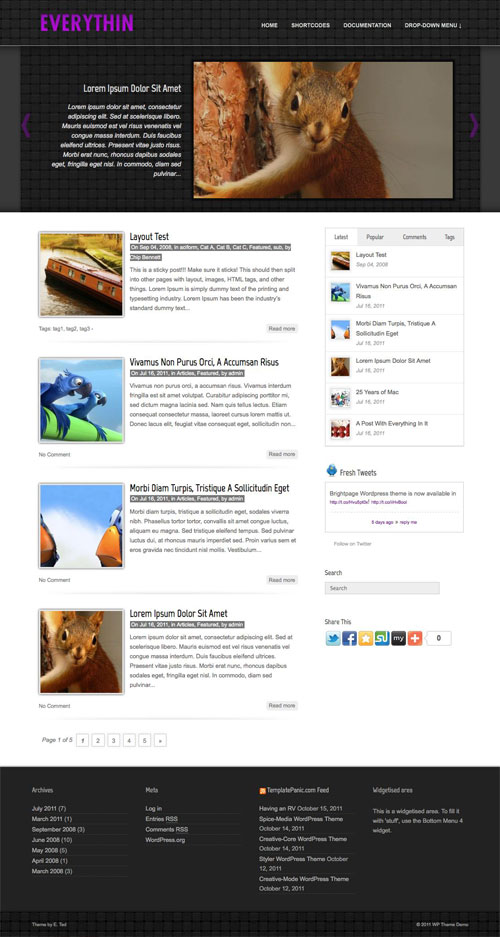 Everythin wordpress theme