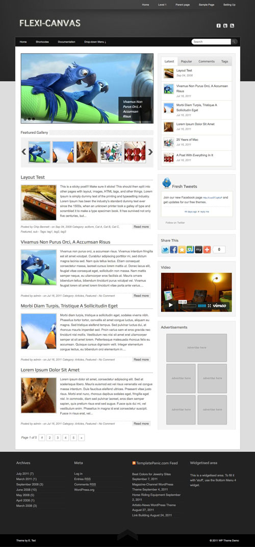 Flexi-Canvas wordpress theme