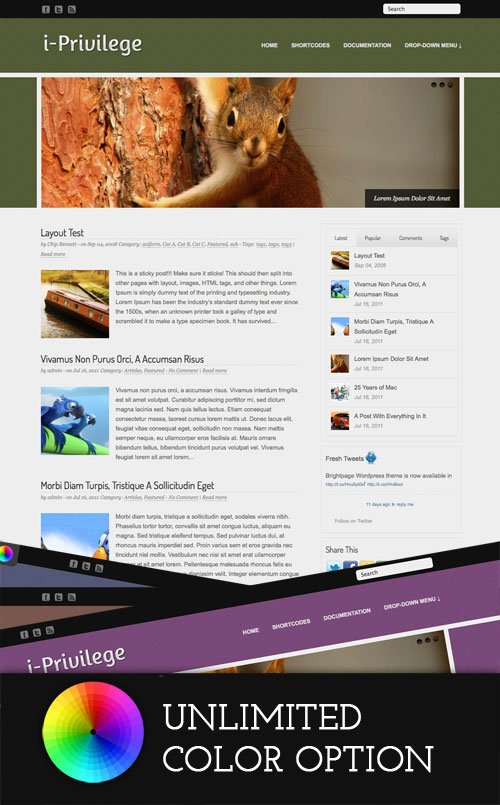 i-Privilege wordpress theme