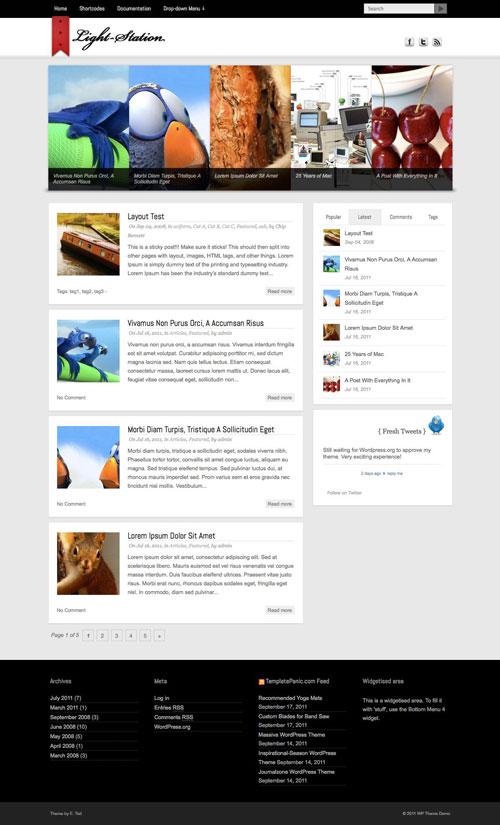 Light-Station wordpress theme