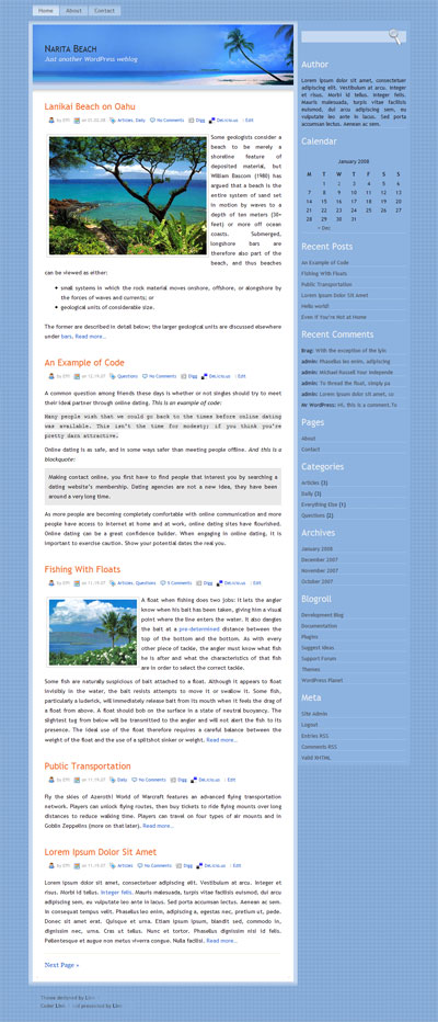 narita beach wordpress theme