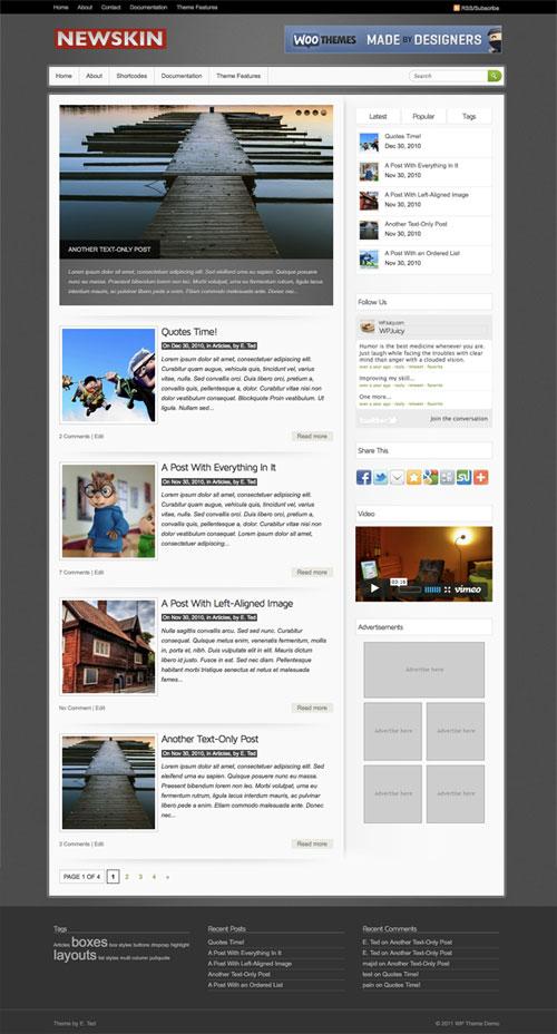 Newskin wordpress theme