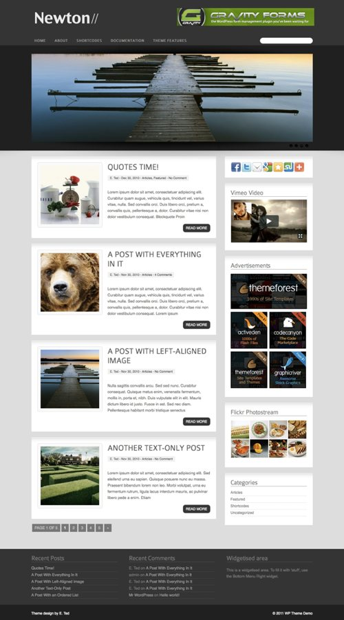 newton wordpress theme