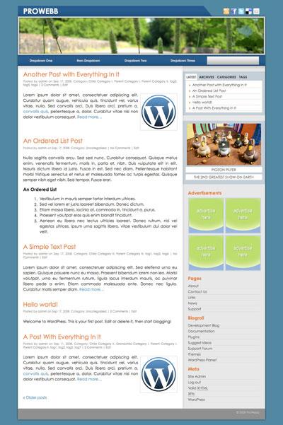 prowebb wordpress theme