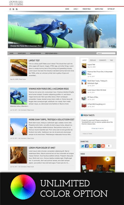 Styler wordpress theme