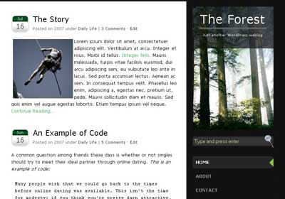 the forest wordpress theme