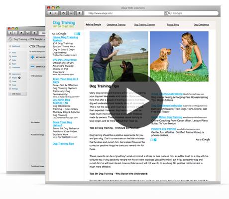 Adsense Theme – WordPress