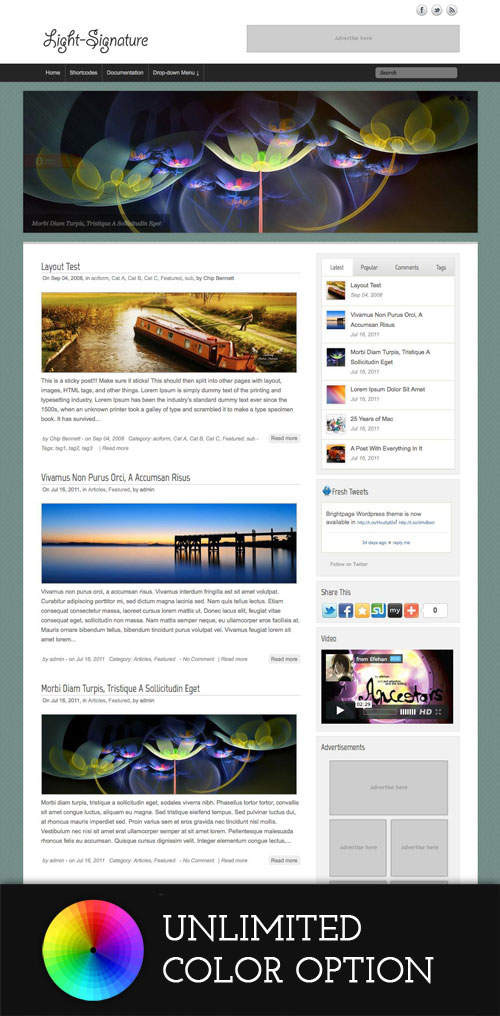 Light-Signature wordpress theme