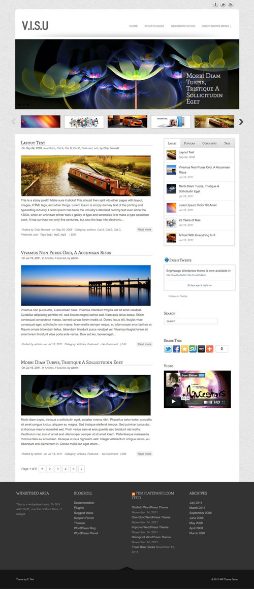 Visu wordpress theme