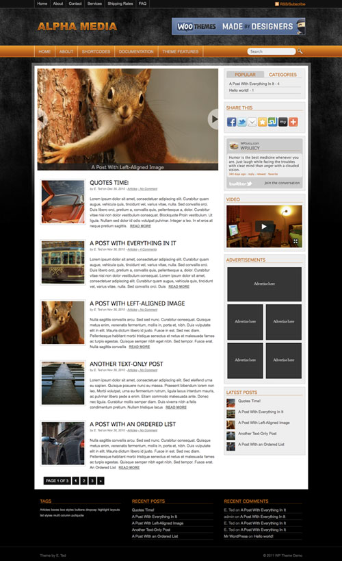 Alpha-Media WordPress Theme