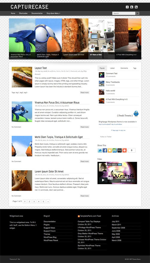 Capturecase WordPress Theme