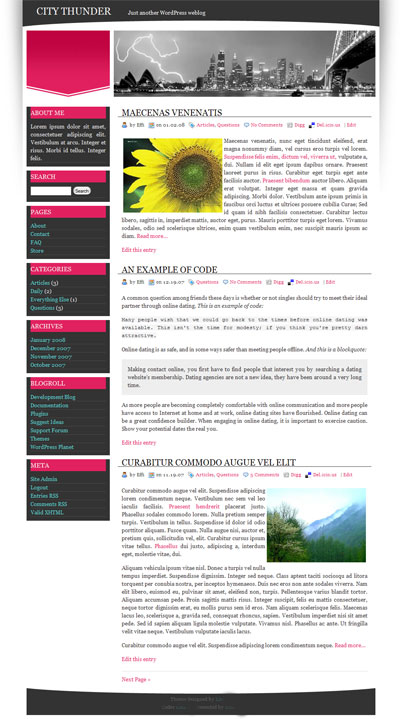 City Thunder WordPress Theme