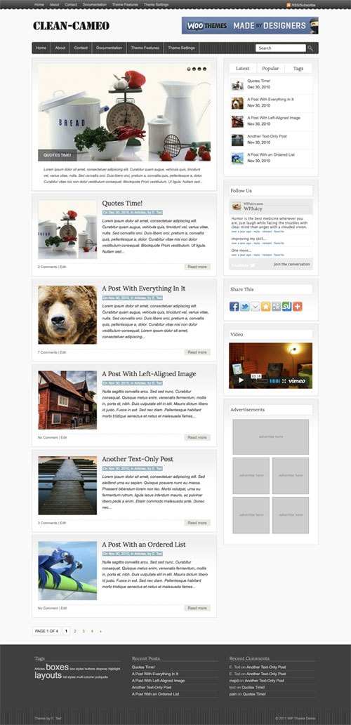 Clean-Cameo WordPress Theme