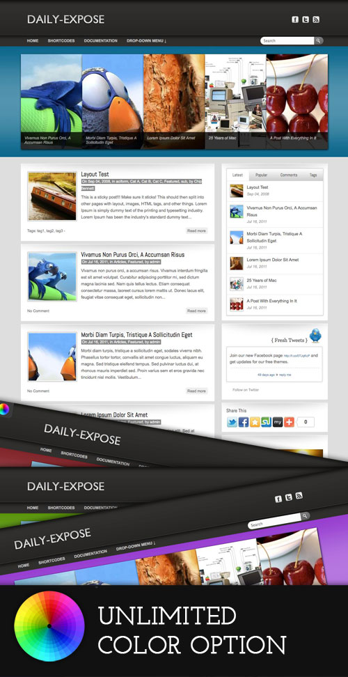 Daily-Expose WordPress Theme