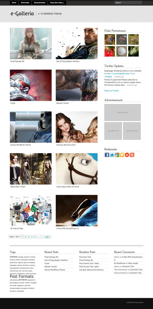 e-Galleria WordPress Theme