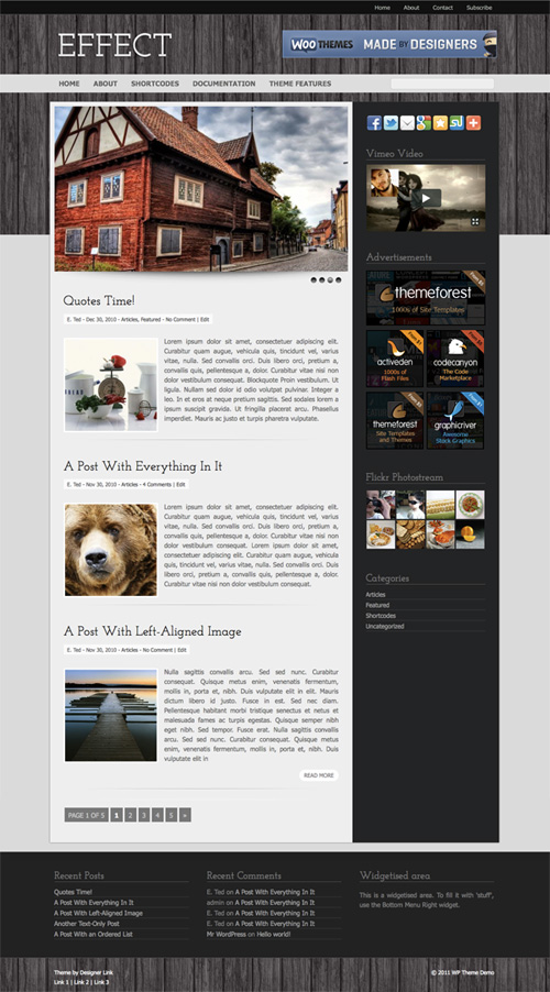 Effect WordPress Theme