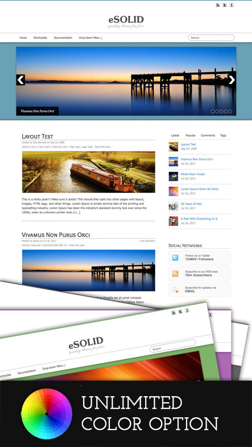 eSolid WordPress Theme