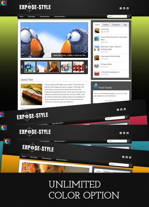 Expose-Style WordPress Theme