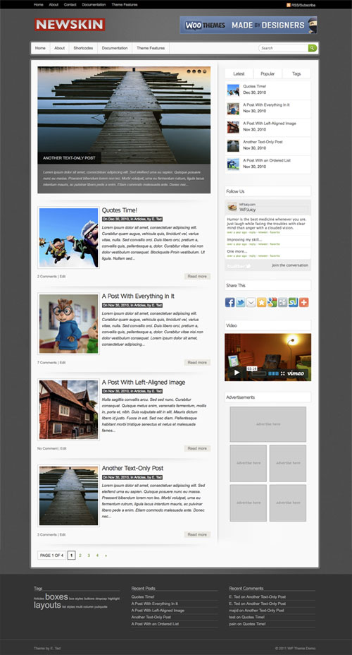 Newskin WordPress Theme