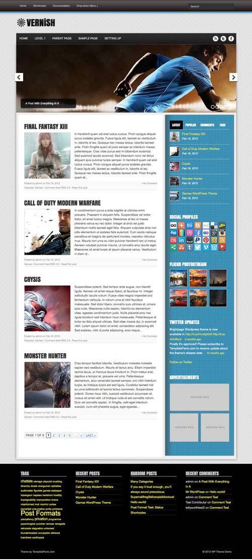 vernish wordpress theme