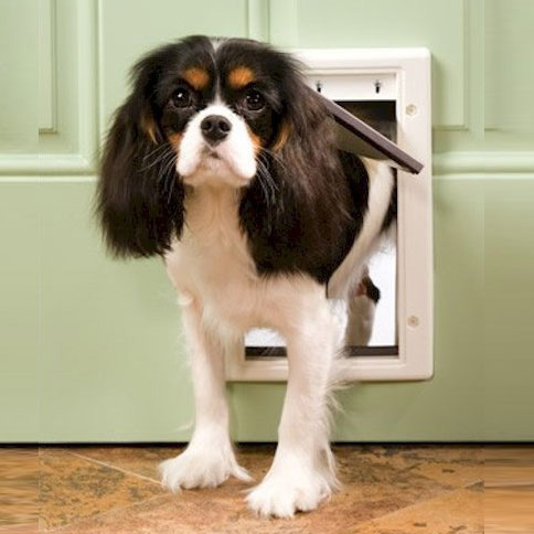 Well Designed Dog Door Panel