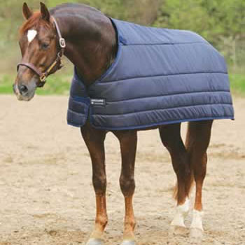 Accessories For Equestrians